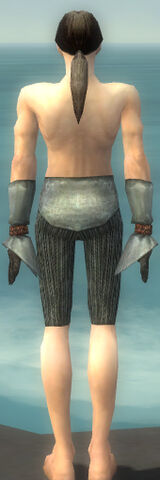 File:Elementalist Ancient Armor M gray arms legs back.jpg
