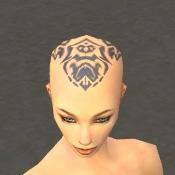 File:Monk Sunspear Armor F gray head front.jpg