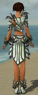 Paragon Primeval Armor F gray back