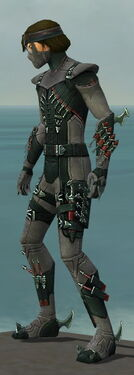 Assassin Seitung Armor M gray side