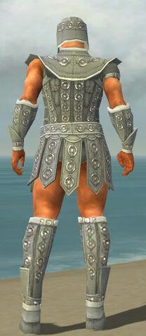File:Warrior Ascalon Armor M gray back.jpg