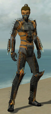 File:Assassin Exotic Armor M gray front.jpg