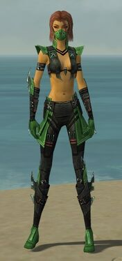 Assassin Luxon Armor F dyed front