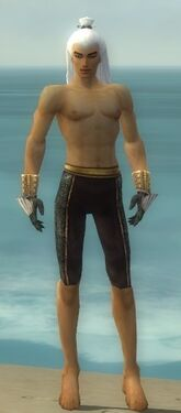 Elementalist Elite Sunspear Armor M gray arms legs front