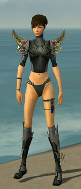 Assassin Elite Imperial Armor F gray chest feet front