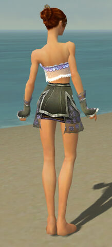 File:Elementalist Shing Jea Armor F gray arms legs back.jpg