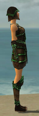 Warrior Shing Jea Armor F dyed side