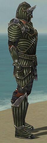 File:Warrior Wyvern Armor M gray side.jpg