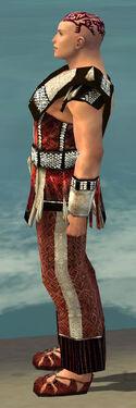 Monk Elite Sunspear Armor M dyed side