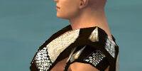 Monk Elite Sunspear armor/Male