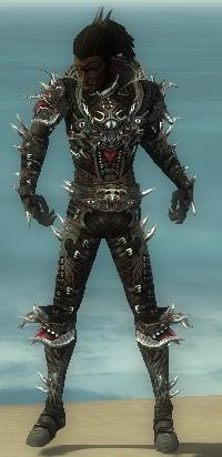 File:Necromancer Elite Canthan Armor M gray front.jpg