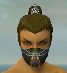 File:Assassin Exotic Armor M dyed head front.jpg