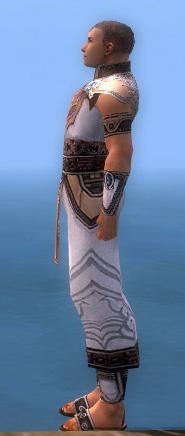 File:Monk Asuran Armor M dyed side.jpg