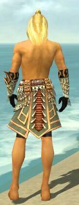 File:Ritualist Elite Imperial Armor M gray arms legs back.jpg