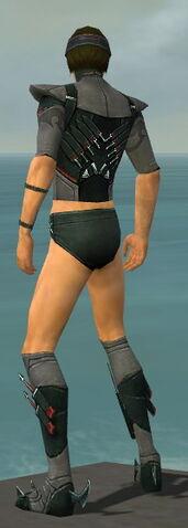 File:Assassin Seitung Armor M gray chest feet back.jpg