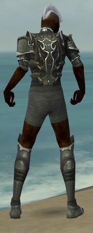 File:Necromancer Tyrian Armor M gray chest feet back.jpg