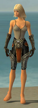 Warrior Elite Canthan Armor F gray arms legs front