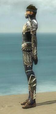 Assassin Asuran Armor M gray side