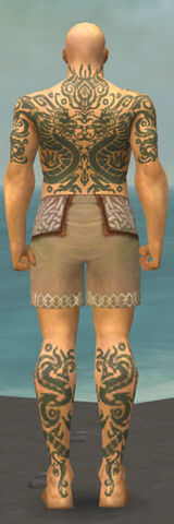 File:Monk Dragon Armor M gray chest feet back.jpg