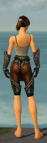 File:Warrior Kurzick Armor F gray arms legs back.jpg