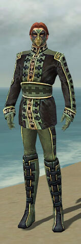 File:Mesmer Canthan Armor M gray front.jpg