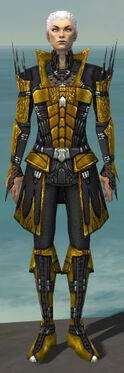 Necromancer Cabal Armor M dyed front