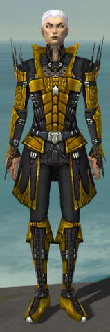 File:Necromancer Cabal Armor M dyed front.jpg