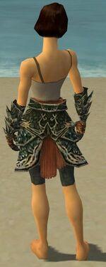 Warrior Elite Luxon Armor F gray arms legs back