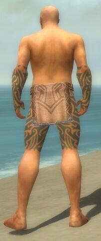 File:Monk Flowing Armor M gray arms legs back.jpg