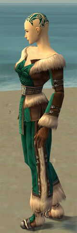 File:Monk Norn Armor F dyed side.jpg