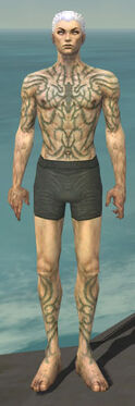 Necromancer Scar Pattern Armor M gray chest feet front