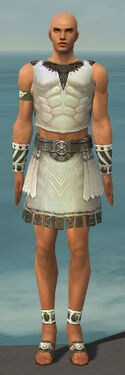 Paragon Istani Armor M gray front