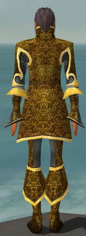 File:Elementalist Elite Canthan Armor M dyed back.jpg