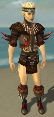 Ritualist Norn Armor M gray chest feet front