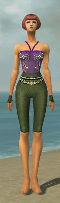File:Mesmer Luxon Armor F gray arms legs front.jpg