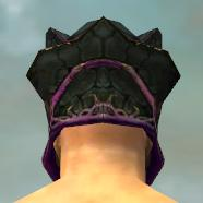 File:Warrior Elite Luxon Armor M dyed head back.jpg