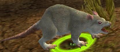 File:Rat kamada.jpg