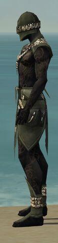 File:Ritualist Kurzick Armor M gray side.jpg