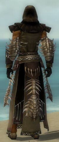 File:Dervish Primeval Armor M dyed back.jpg