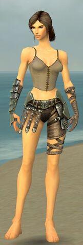File:Warrior Elite Gladiator Armor F gray arms legs front.jpg