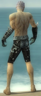 File:Necromancer Canthan Armor M gray arms legs back.jpg
