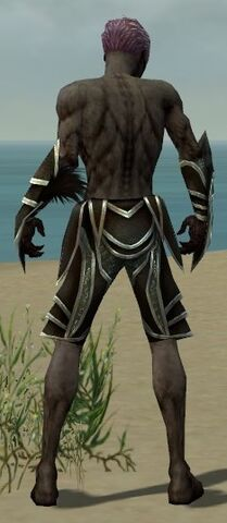 File:Necromancer Elite Sunspear Armor M gray arms legs back.jpg