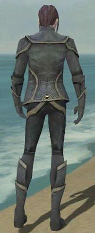 File:Elementalist Ascalon Armor M gray back.jpg