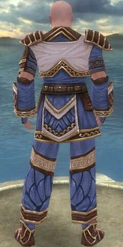 File:Monk Elite Canthan Armor M dyed back.jpg
