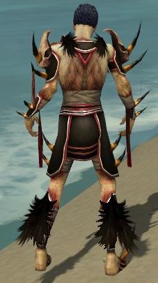 File:Necromancer Ancient Armor M dyed back.jpg