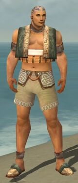 Monk Vabbian Armor M gray chest feet front