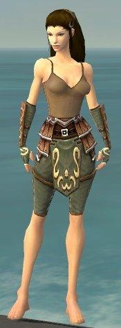 File:Ranger Shing Jea Armor F gray arms legs front.jpg