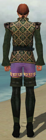 File:Mesmer Courtly Armor M gray chest feet back.jpg