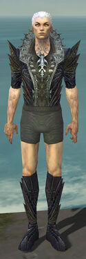 Necromancer Krytan Armor M gray chest feet front