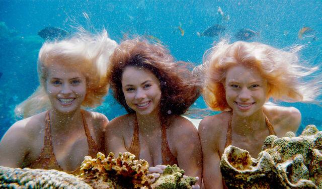File:Mako Mermaids Underwater.jpg